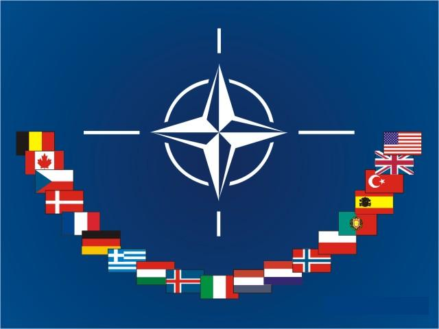 Google Image Nato