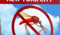 newyork_sivrisinek_virus_alarmi